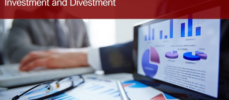 Valuations for Acquisition, Investment and Divestments_Brickstone Africa