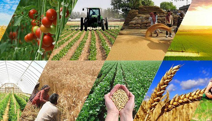 Agriculture_Brickstone