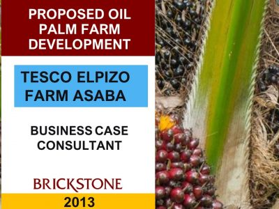 oil-palm-agribusiness-project