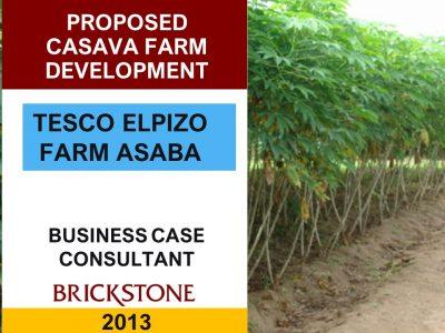 Cassava Outgrower Farm