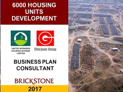 Business Plan for the Mass Housing Development Project
