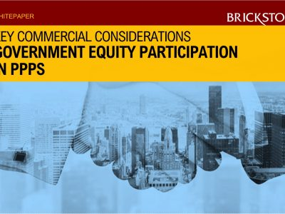 Government Equity Participation
